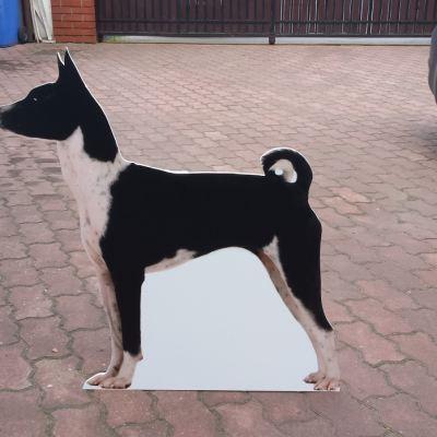 Monidła - pies